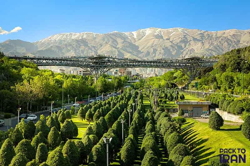 Nature Bridge - Tehran, Iran