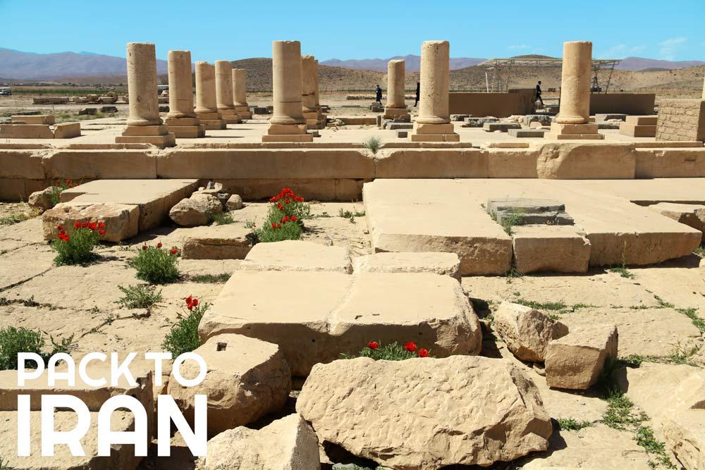 Pasargadae - Iran