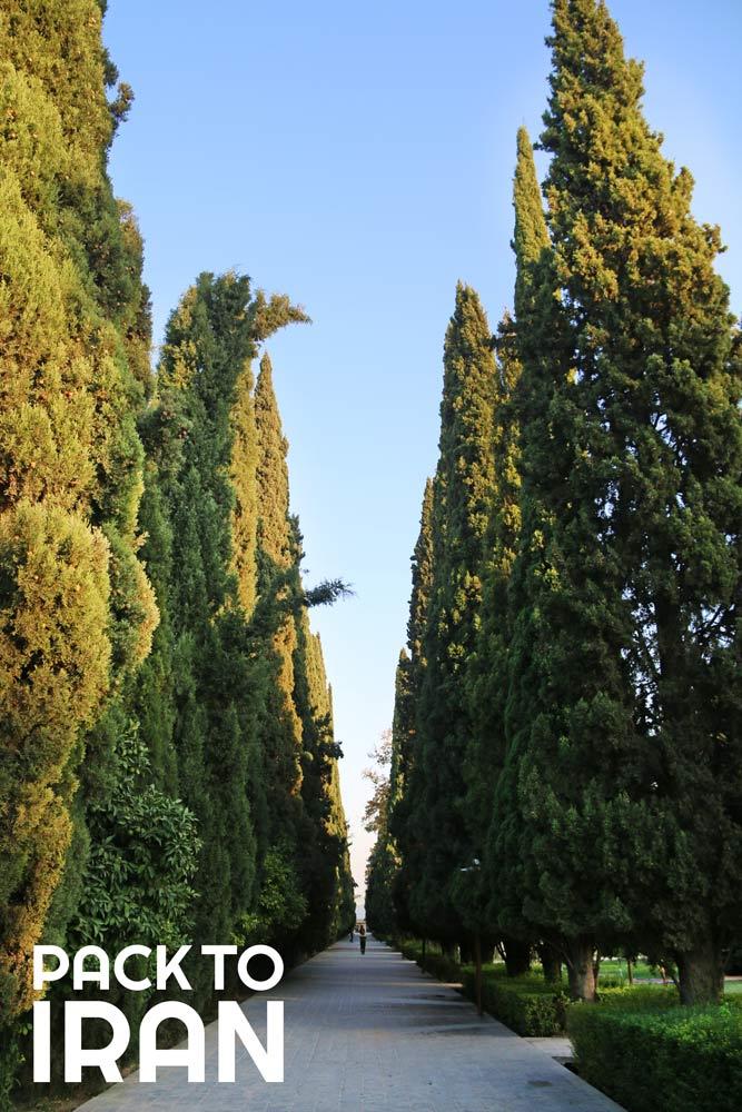 The Botanical Eram Garden - Shiraz, Iran