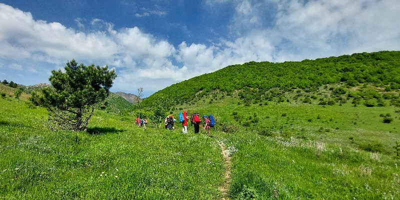 An Adventure Through The Jangal-e Abr (Cloud Forest) in Northern Iran
